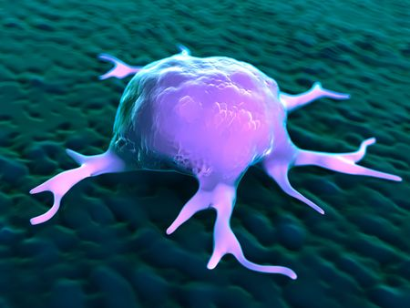 macrophages: 3d rendering - macrophages Stock Photo