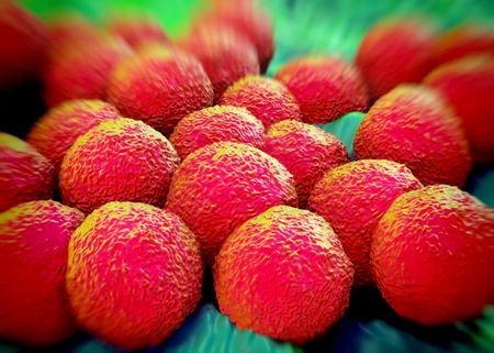 3d rendering - Neisseria gonorrhoeae bacteria Stock Photo