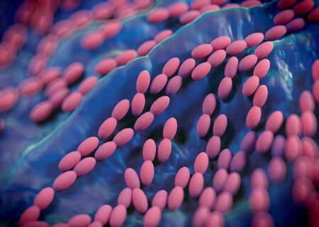 spoilage: 3d rendering - acetobacter bacteria