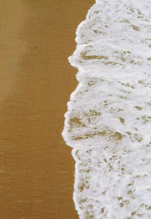 frothy: Gentle frothy waves washing onto a sandy ocean beach