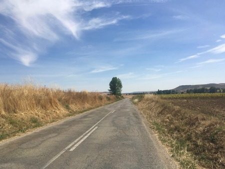 A Road in the middle of nowhere in Spain, la meseta, Camino de santiago