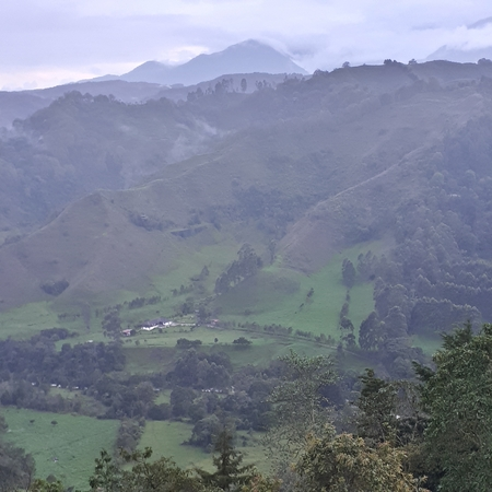 Mountain and high angle view of the Cocora valley in Colombia Stock fotó