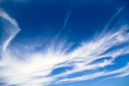 meterology: View of sunny sky background whith white clouds