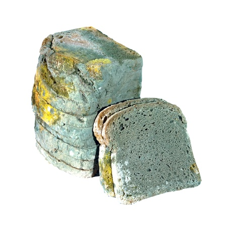 levadura: Moldy el pan en rodajas tóxicos aisladas sobre fondo blanco