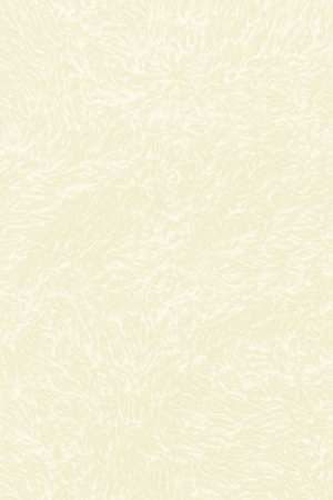 white textured paper: old greenish paper with subtle pattern to use as background