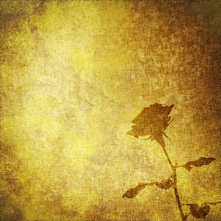 yellow pages: Old parchment with rose flower, textile vintage abstract background