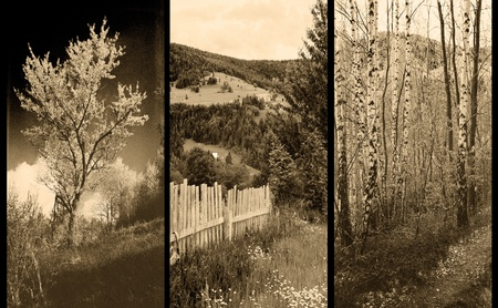 triptych: old traditional photography - Rural views, triptych