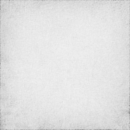 white linen with delicate grid to use as grunge background or texture photo