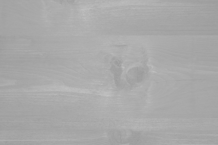gray background with delicate wood texture photo