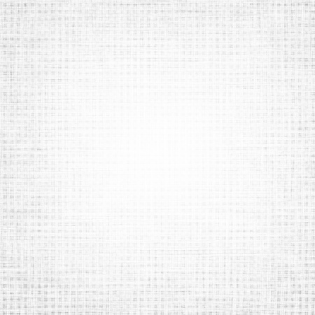 linen paper: white canvas with delicate grid to use as background or texture