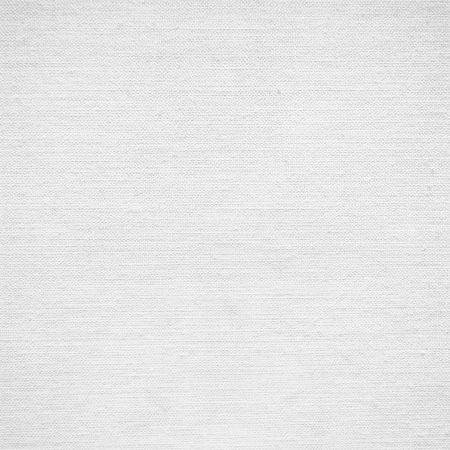white background canvas or paper paper texture Stock Photo - 21732654