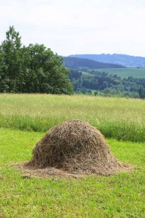 hayride: haystack on the grass field and rural landscape
