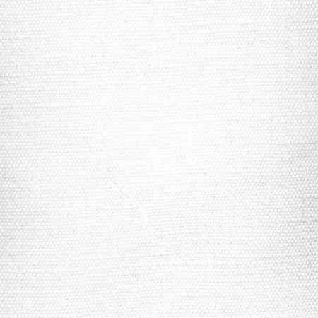 white background canvas or paper paper texture Stock Photo - 22417496