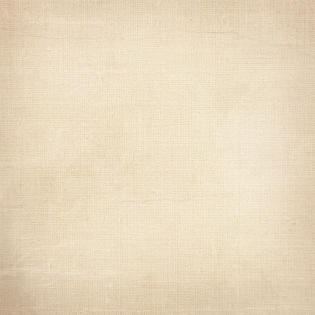 white canvas texture bright paper background Stock Photo - 22417484