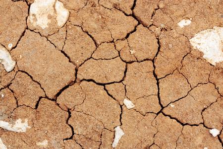 ecological damage: cracked ground texture background, desert