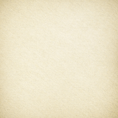 ripped paper: old canvas texture background with delicate stripes pattern and vignette