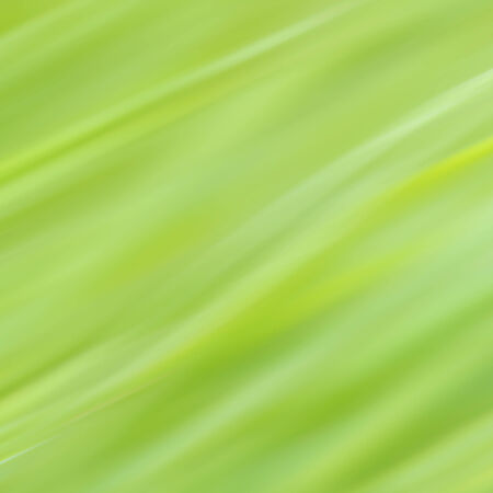 green background smooth blur texture photo