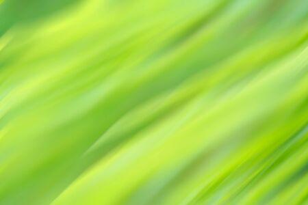 green background oblique lines texture photo
