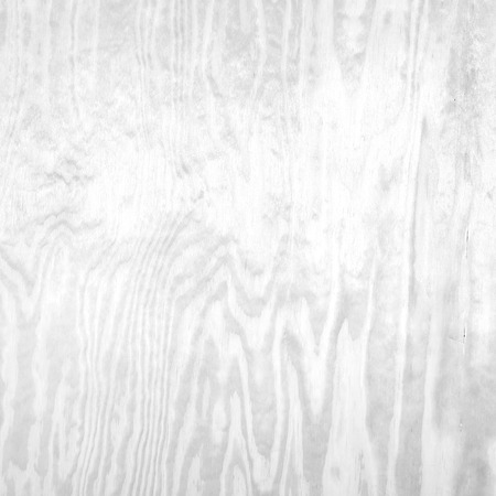 wood texture background: white background bright gray wood texture background Stock Photo