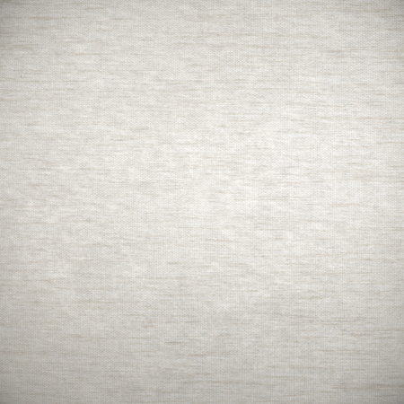 background canvas: white background canvas texture with delicate grid pattern and gray vignette