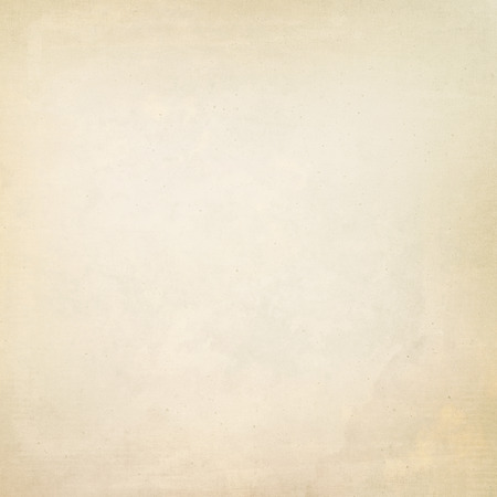 grunge background parchment paper texture