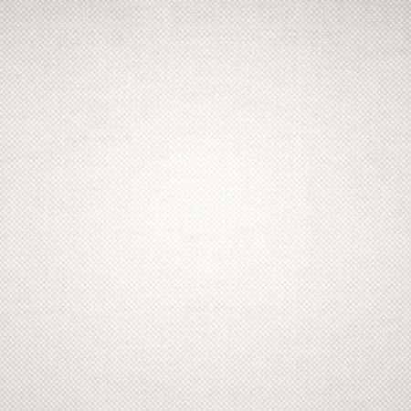 grid paper: white paper texture background with delicate grid pattern