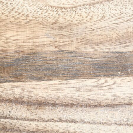 ivory: ivory wood texture background