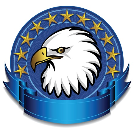us air force: Eagle Banner