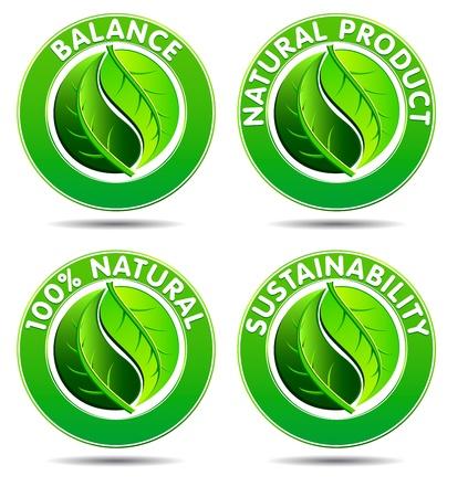 sustentabilidad: Concepto de iconos verdes con Yin Yang en un diseño de hoja