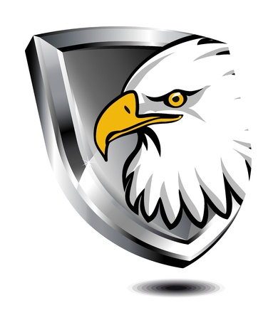 secure security: Eagle Shield Illustration