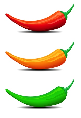 spicy chilli: Three Chillies, peppers, illustration Illustration
