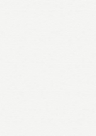 クリーンな高ホワイト ペーパー バック グラウンド水平風合いと、非常に大規模な形式 写真素材