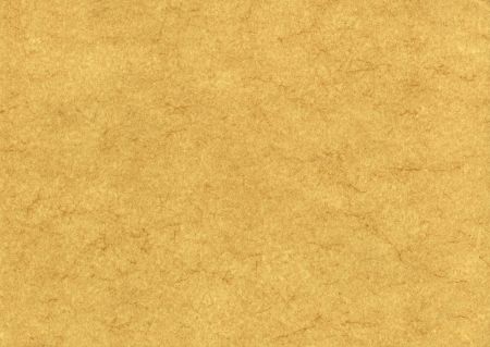 Parchment background texture photo
