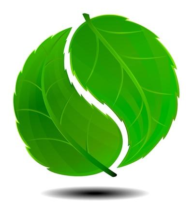 fengshui: Green logo Illustration