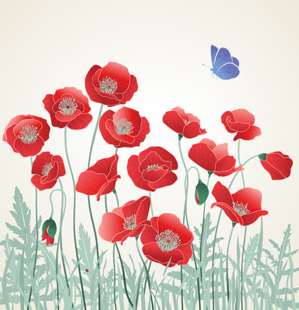 Field of Red Poppies with Butterfly Vector