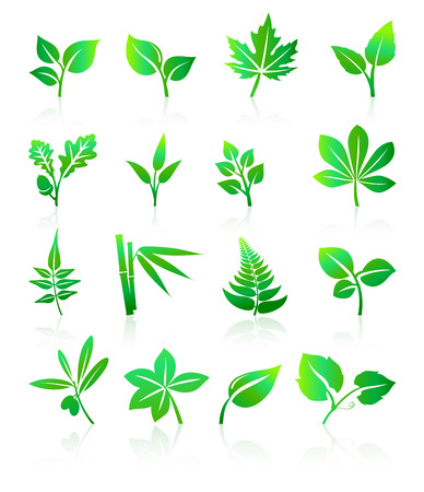 stylized: Green Leaf Icons Illustration