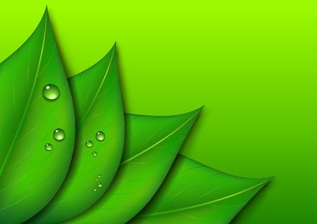 Green Leaf Design Environmental Background Vector