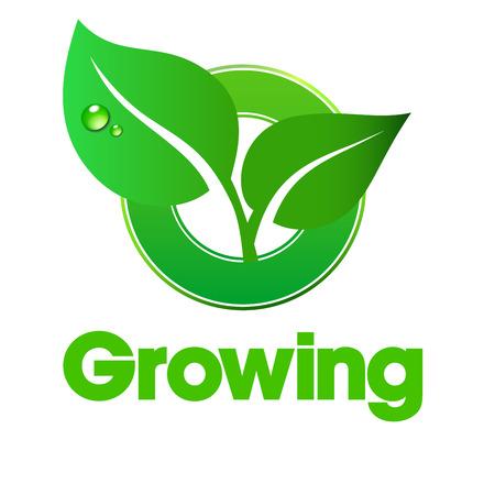 葉の成長のロゴ - 概念を使用して葉