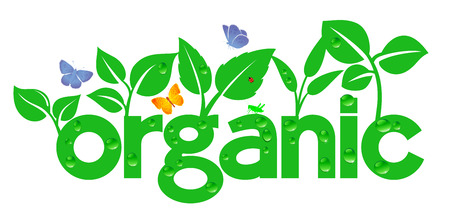 Organic wording with growth and nature around it Vector