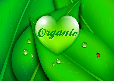 organic background: Organic Heart Green Environmental Background