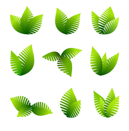 germinate: Green concept using leafs