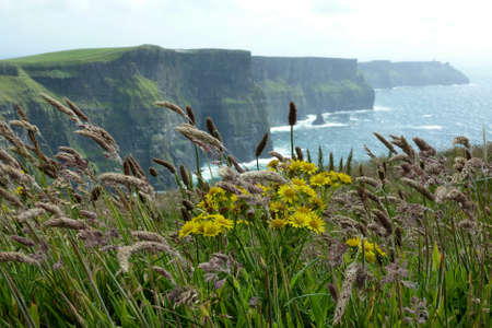 Cliffs of Moher Ireland photo