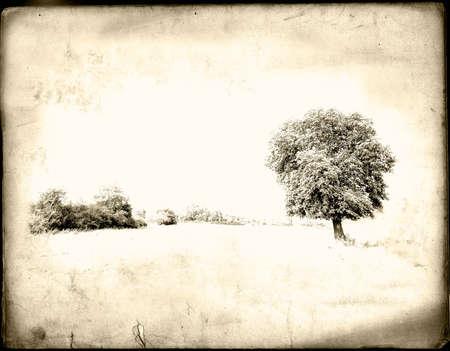 earthy: Old shabby postcard