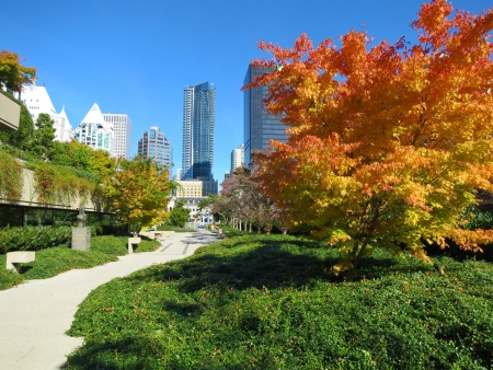 port stanley: autumn in Vancouver, Canada Stock Photo