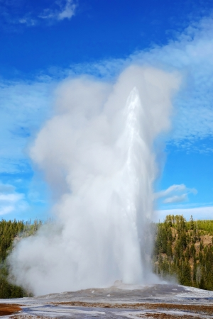 Eruption of Old Faithful geyser at Yellowstone National Park, United States