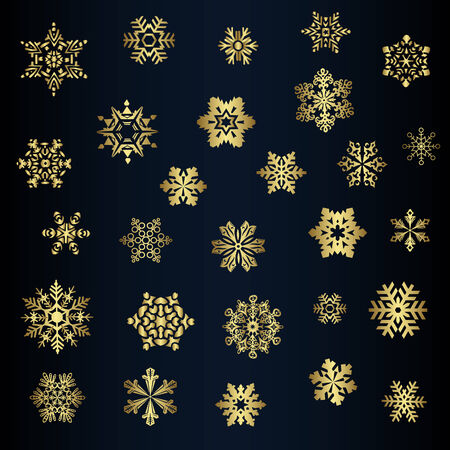 snow crystals: Set of different snowflakes vector