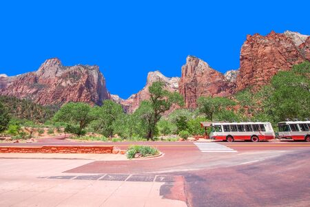 panoramic picture of zion national park, utah, USA photo