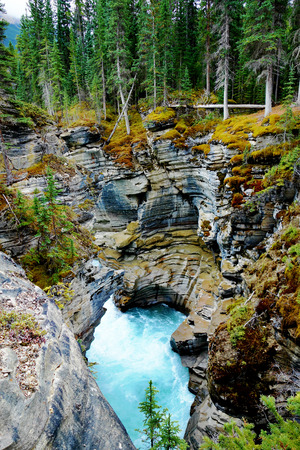 hydrology: Gorge at Athabasca Falls in Jasper National Park