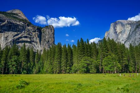 granite park: Yosemite National park, California, USA