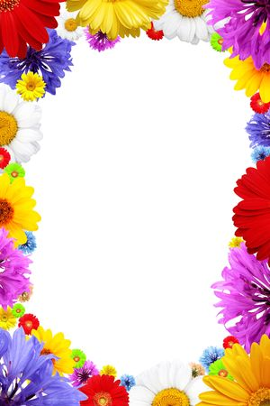 Frame of  colorful  summer flowers isolated on white background photo